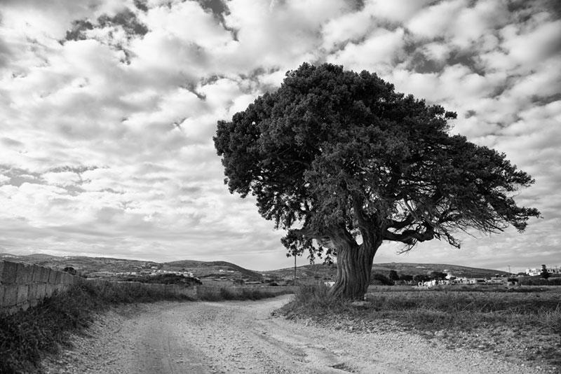 Paros Greece Photography
